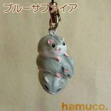 3hamu_bule02