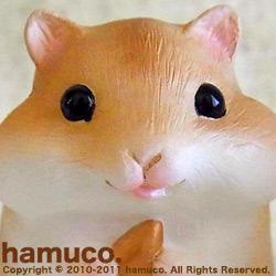 Sub_hamuco