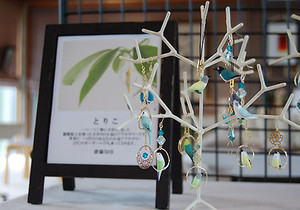 Toricotree